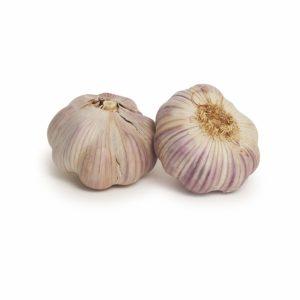 Australian Garlic Seedlingcommerce © 2018 7878.jpg