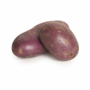 Royal Blue Potato Seedlingcommerce © 2018 7841.jpg