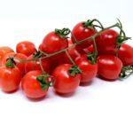 Tomatoes 3121960 1920.jpg